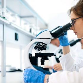 Estudios preventivos y de laboratorio
